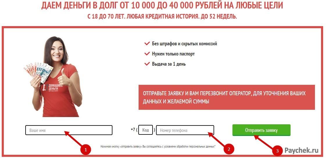 """Заявка на микрозайм в ООО """"Домашние деньги"""""""